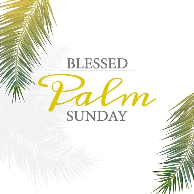 We wish you a blessed Palm Sunday. May it bring you peace and good will.